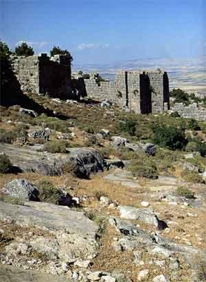 Ruines du château de Bourzey - Mohamad Al Roumi et Jean Mesqui